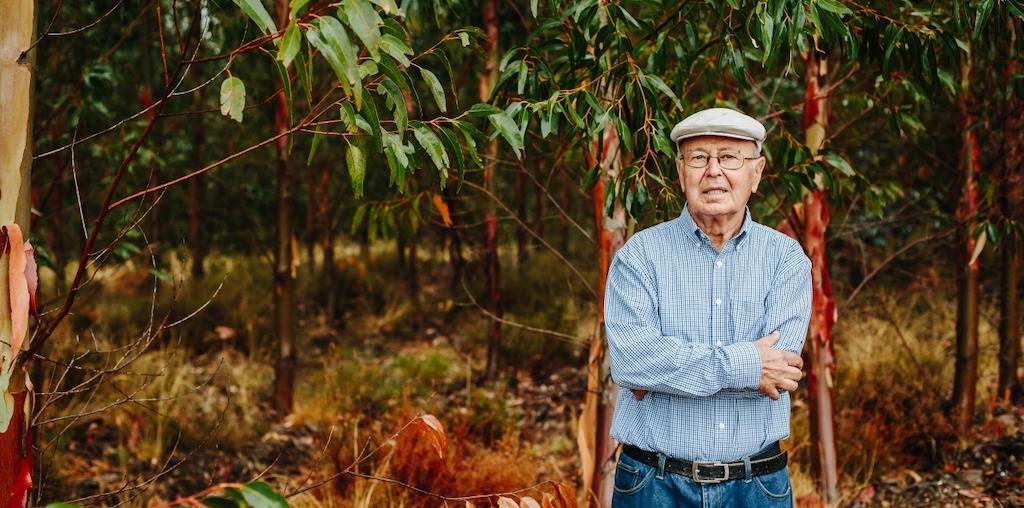 Manuel Aires Henriques na floresta de eucalipto