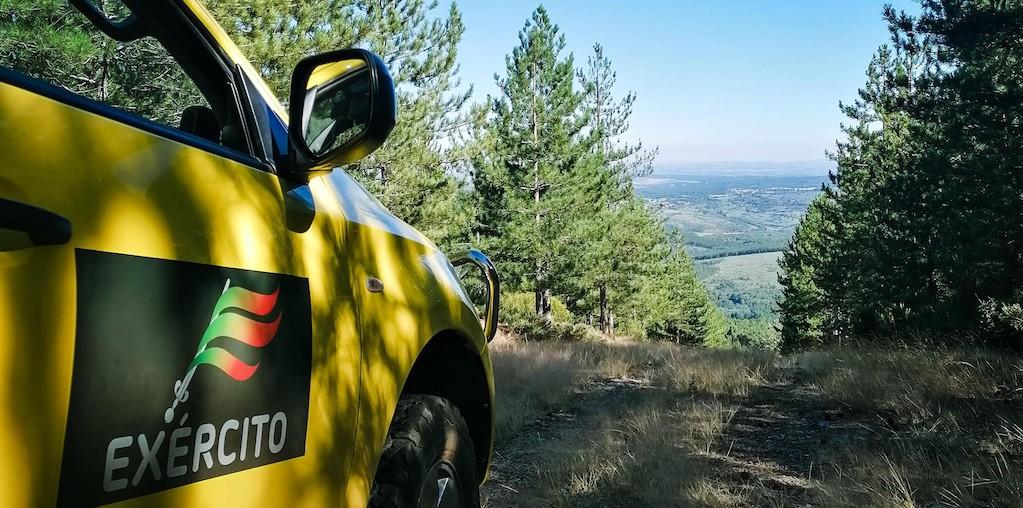carro exército a vigiar floresta