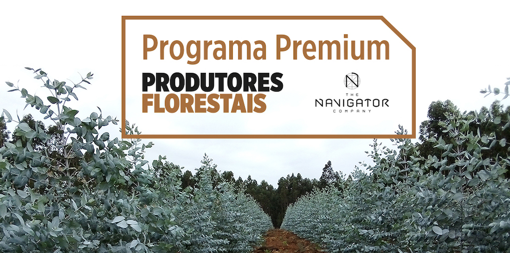 Programa Premium Produtores Florestais