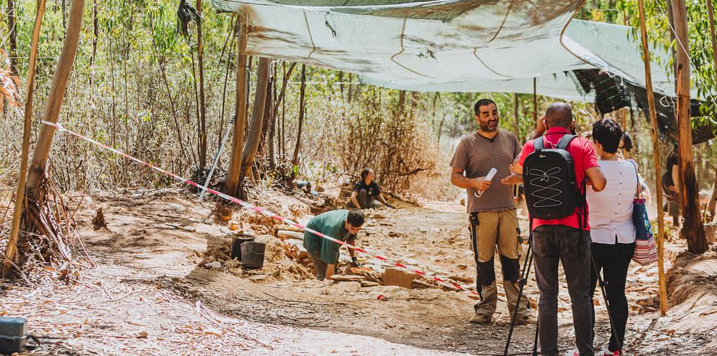 grupo arqueologos