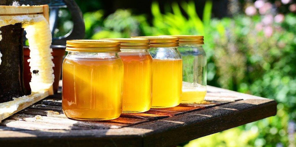 frascos com produção de mel