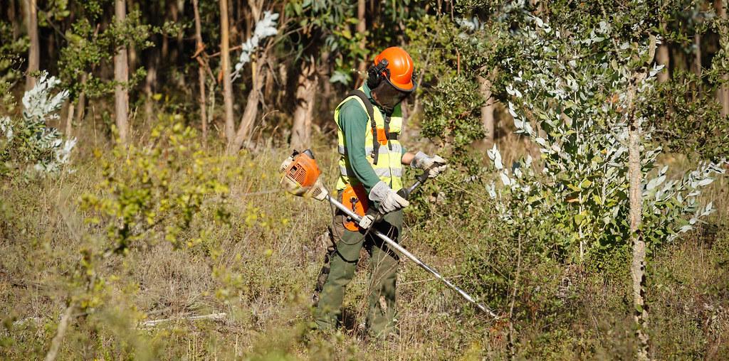 homem a limpar mato com aparelhos específicos