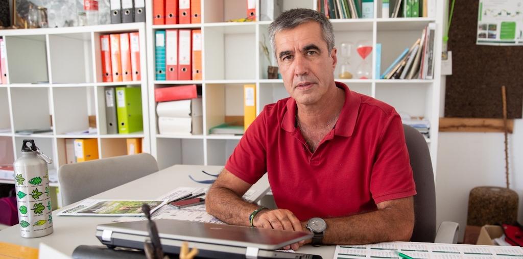Luís Damas