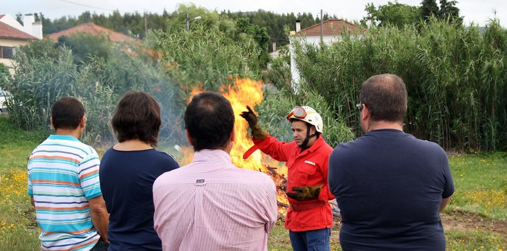 acção de formação de queimas
