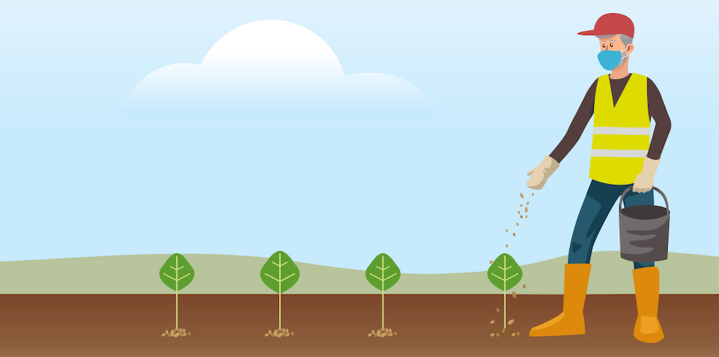 ilustraçao adubar terreno