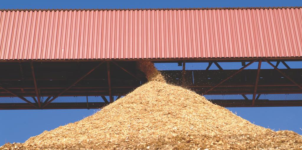 descarga de biomassa